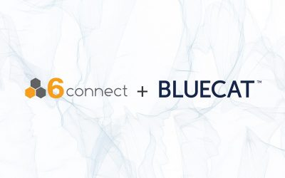 6connect and BlueCat join forces to solve the multi-DDI problem